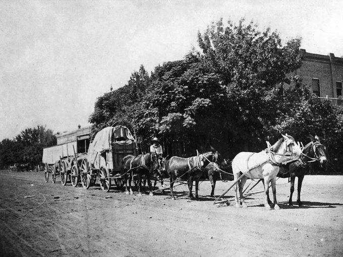 circa 1900 - Jose Araiza with 6 mule team 3 wagon train on Mill Avenue, Tempe, AZ